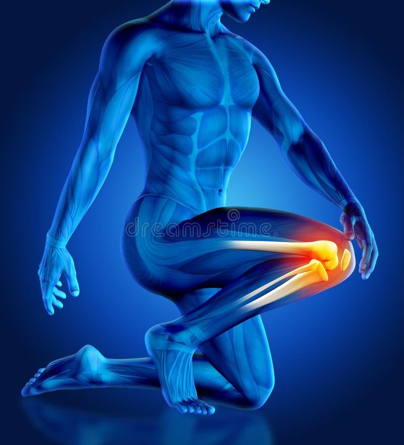 мужское держа колено 3D в боли иллюстрация вектора