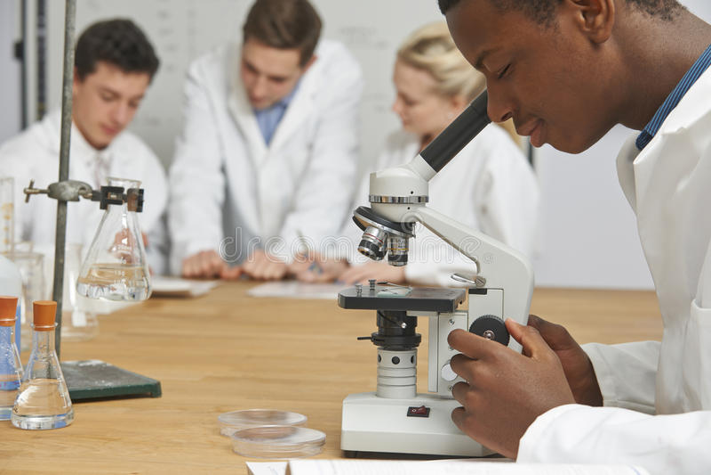 Мужской зрачок используя микроскоп в классе науки стоковые фото