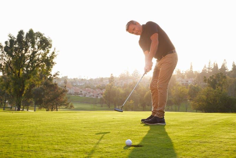 Мужской игрок в гольф кладя шарик в отверстие на зеленый цвет стоковое изображение