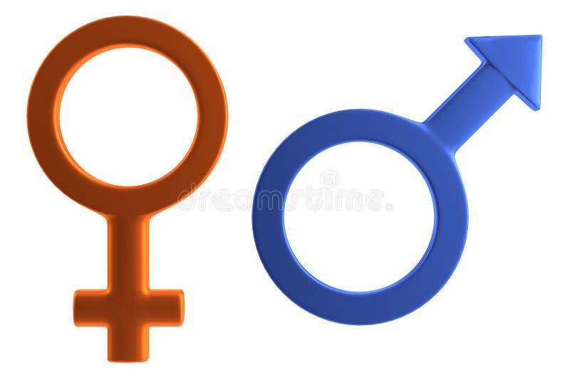 Мужской и женский знак иллюстрация вектора
