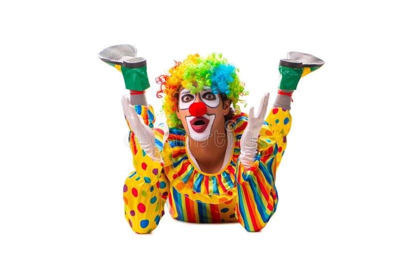 Мужской клоун изолированный на белизне стоковые фотографии rf