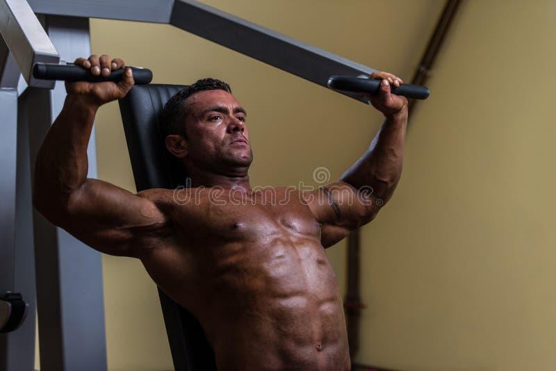 Мужской культурист делая тяжеловесную тренировку для верхнего комода стоковое изображение rf