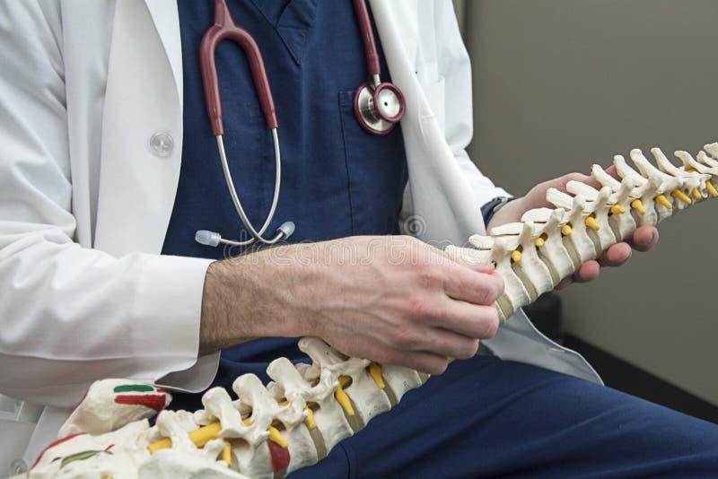 Мужской доктор держа позвоночник и говоря к пациенту стоковые фото