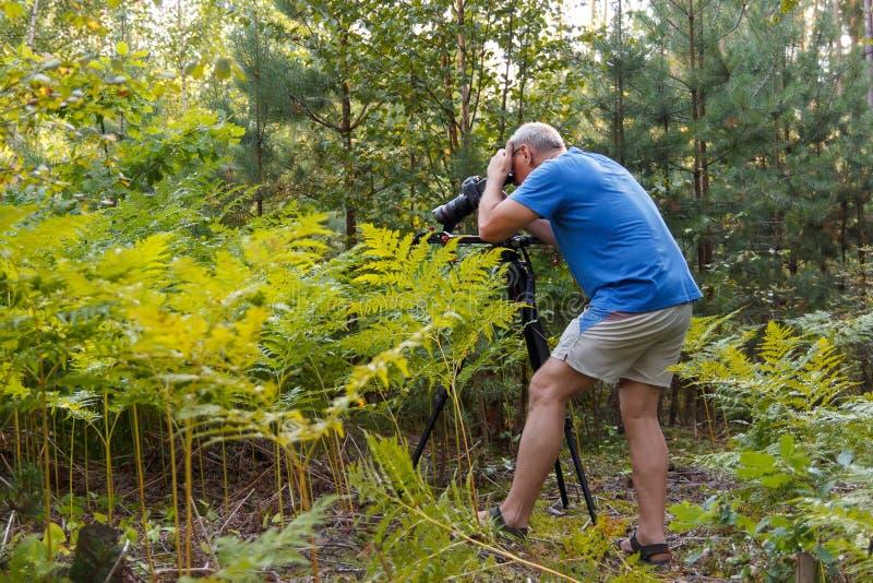 Мужской фотограф со стрельбой приниманнсяой за камерой в лесе стоковые фотографии rf