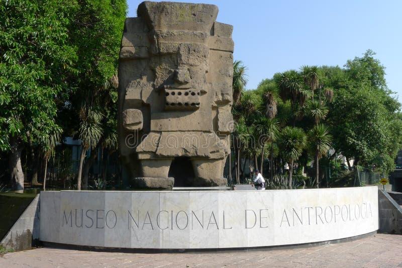 музей антропологии стоковое фото rf