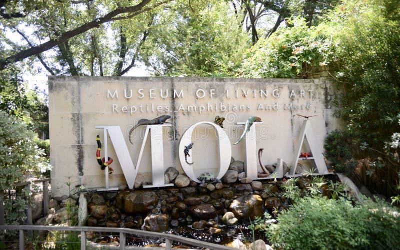 Музей живущего искусства на зоопарке Fort Worth, Fort Worth, Техаса стоковое изображение rf