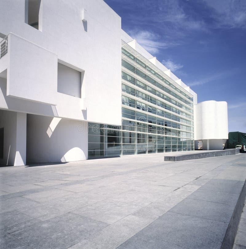 музей Испания macba barcelona стоковое фото