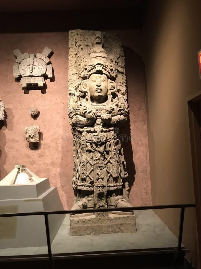 Музей Нью-Йорка естественной истории стоковое фото