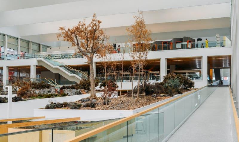 Музей эволюции человека в Бургосе, Испании музей на предмете эволюции человека стоковые изображения