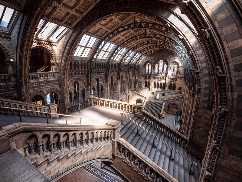 музей london истории Англии естественный стоковая фотография