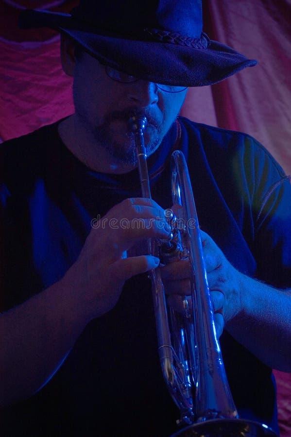 музыкант син стоковая фотография