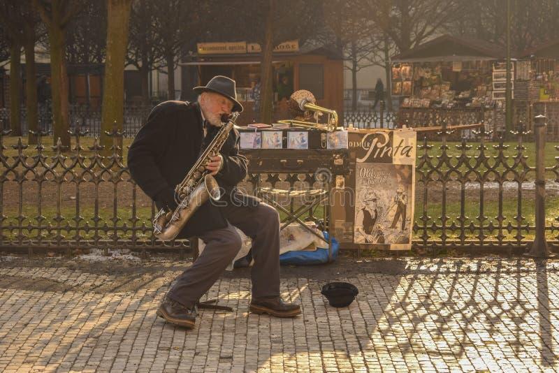 Музыкант улицы в солнечном свете стоковая фотография rf