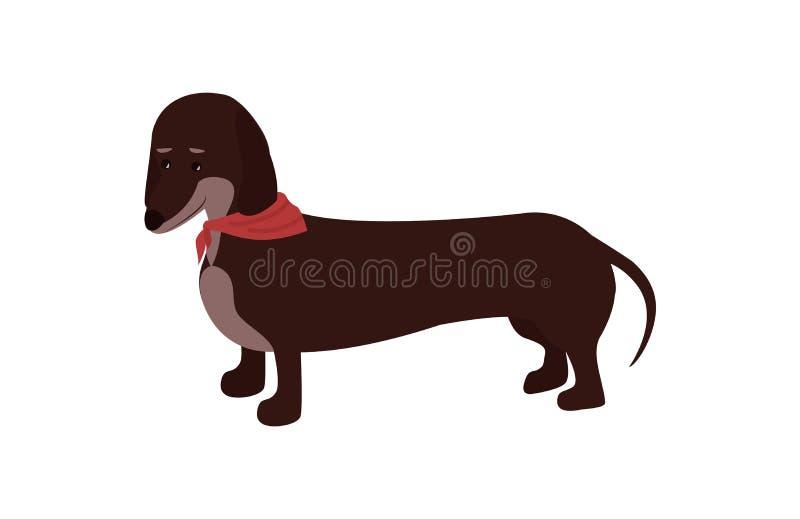 Мультфильм вектора собаки таксы иллюстрация штока