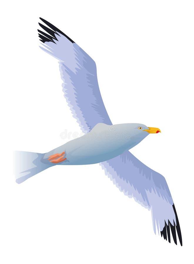 Мультфильм птицы чайки изолированный летанием иллюстрация штока