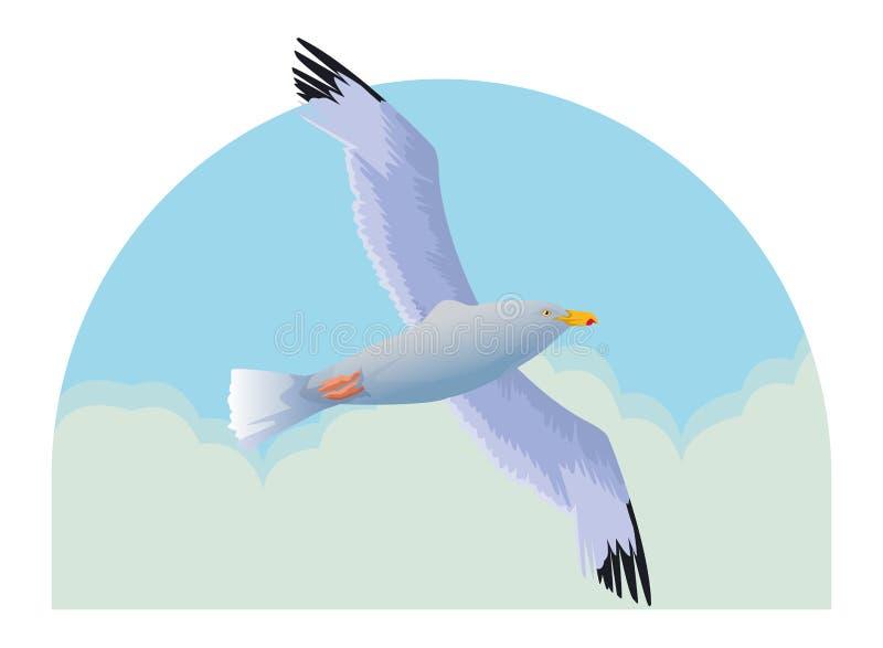 Мультфильм птицы чайки изолированный летанием бесплатная иллюстрация