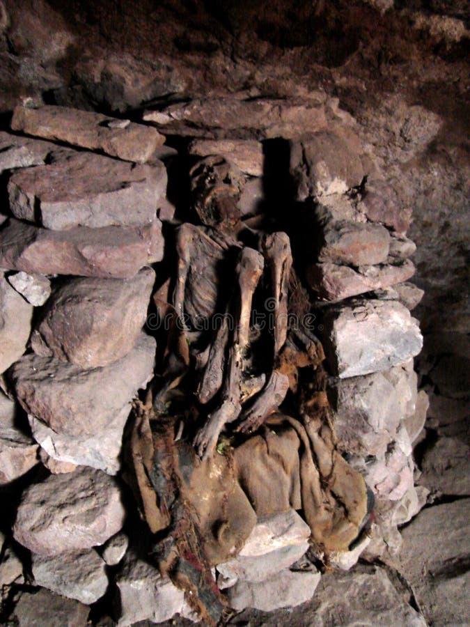 мумия andes стоковые фото