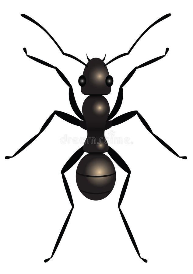 муравей бесплатная иллюстрация