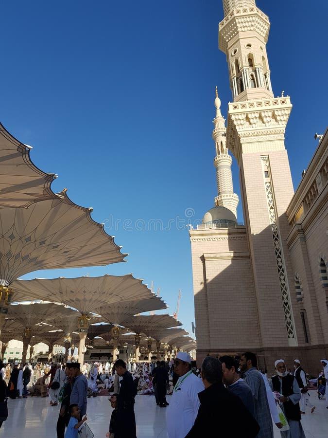 Мусульманская святая мечеть Объединенные эмираты стоковое фото rf