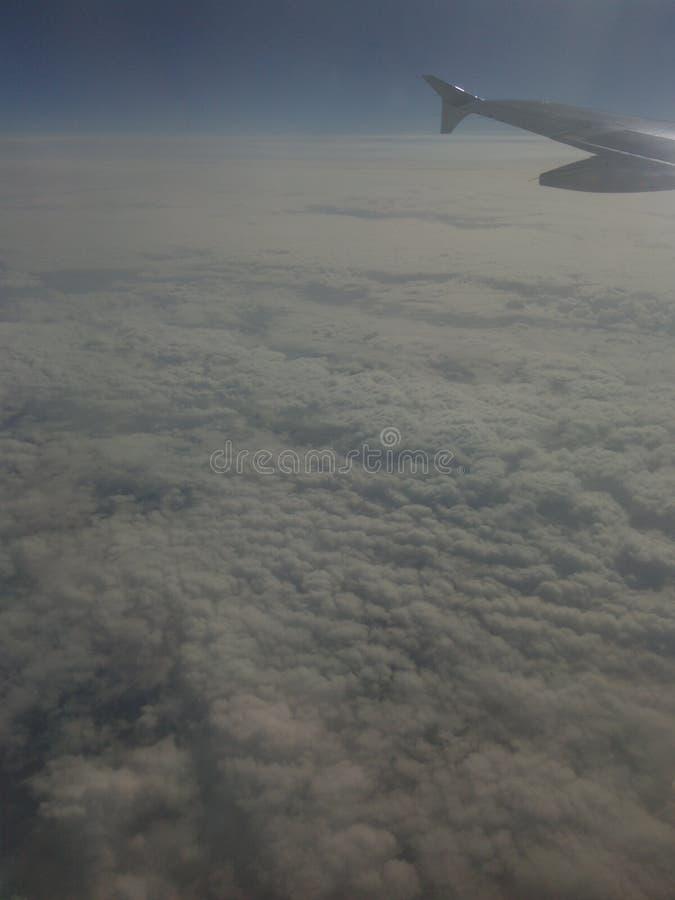Муха в воздухе стоковые фотографии rf