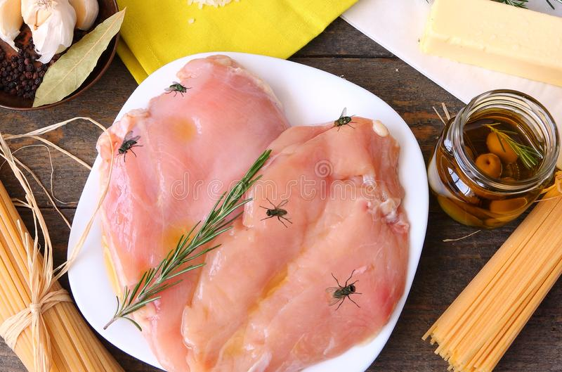 Мухы сидя на сыром мясе стоковые фотографии rf