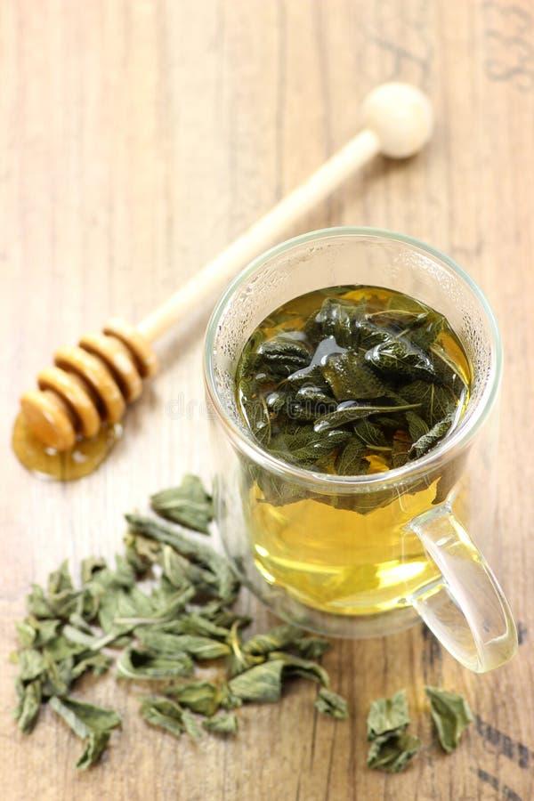 мудрый чай стоковые изображения rf