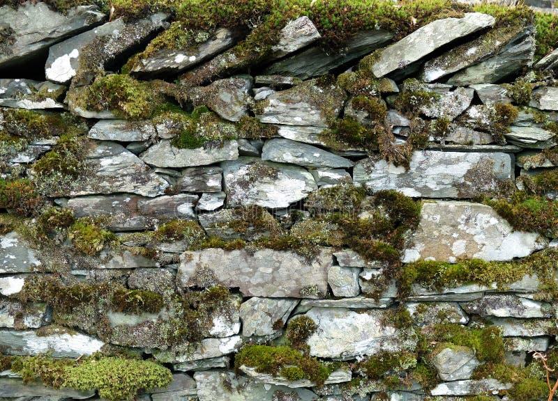 Мшистая сухая каменная стена стоковая фотография