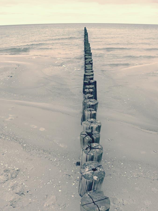 Мшистые поляки волнореза в ровной воде моря в пределах windless Песчаный пляж стоковое фото