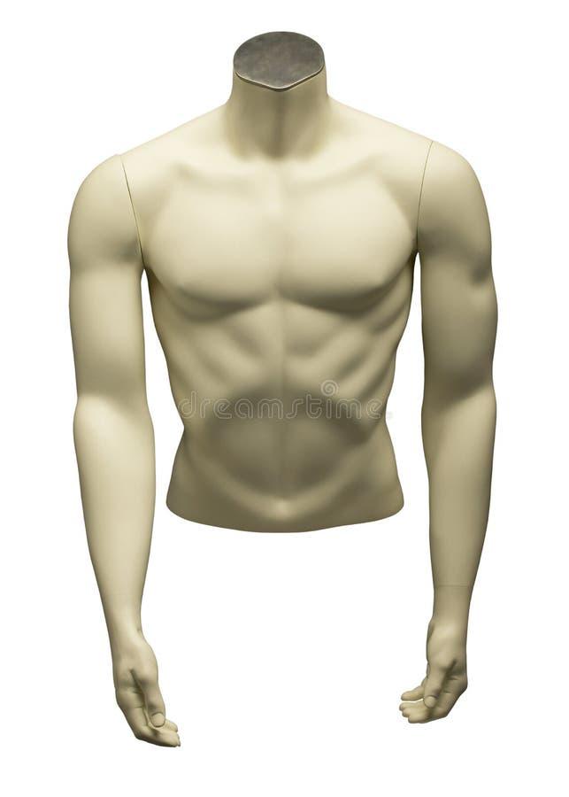 мыжская белизна манекена стоковые изображения rf