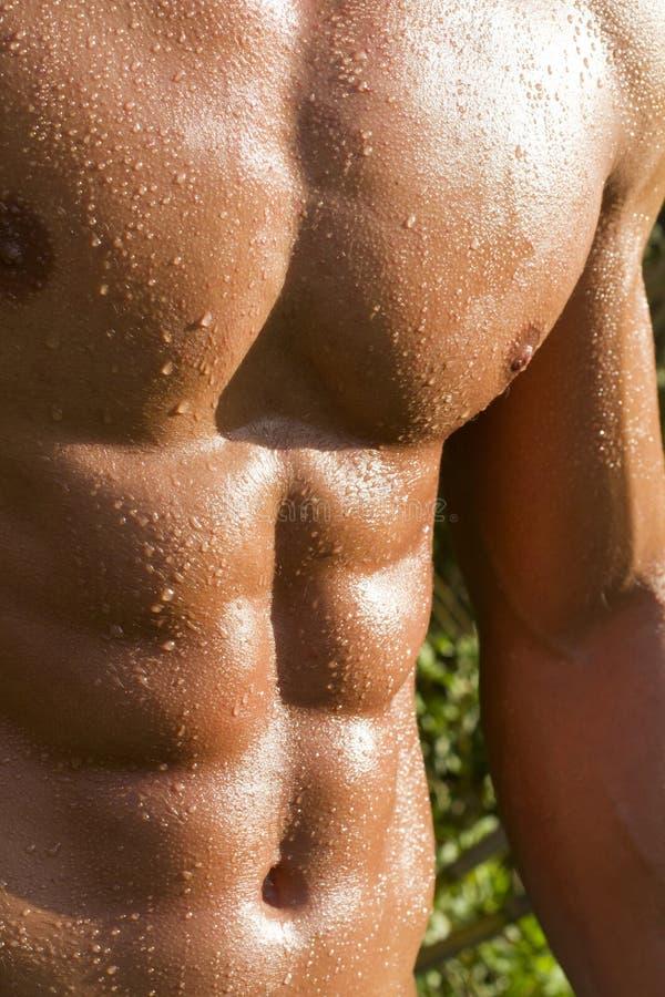 Мыжская модель с мышцами на сельской местности стоковое изображение rf