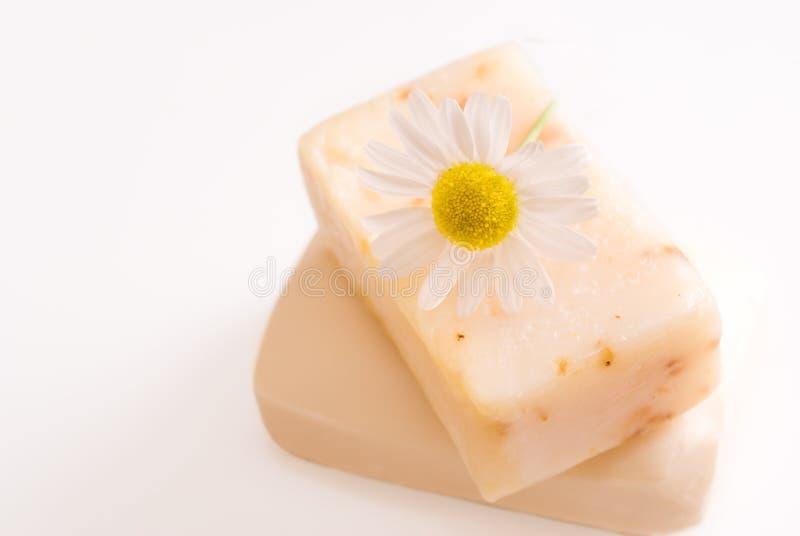 мыло кожи стоцвета стоковая фотография rf