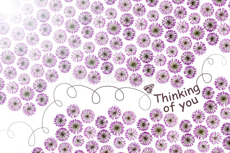 Мысль о вас - карта картина цветков в цветах сирени стоковое изображение rf