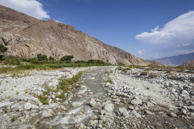Мытье пустыни стоковые фото