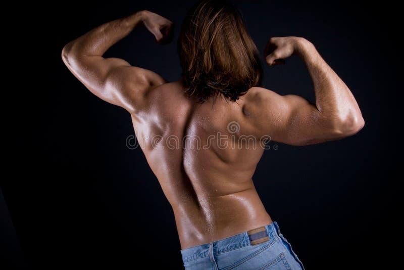 Мышечная задняя часть мужчины стоковая фотография