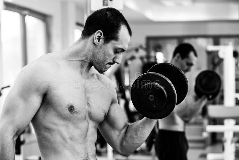 Мышечная тренировка человека культуриста стоковая фотография rf