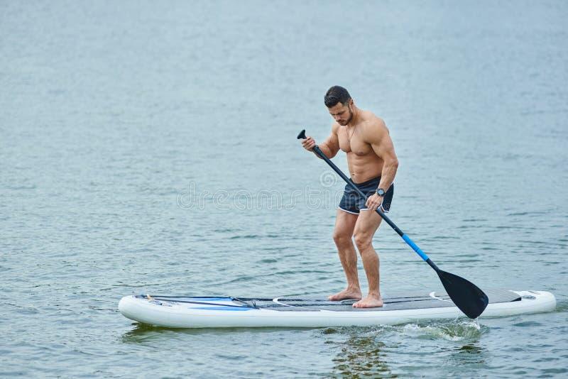 Мышечное заплывание спортсмена на доске маленького глотка в озере города, держа длинное весло стоковое изображение rf
