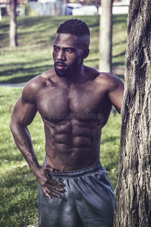 Мышечный без рубашки чернокожий человек в парке стоковые изображения rf