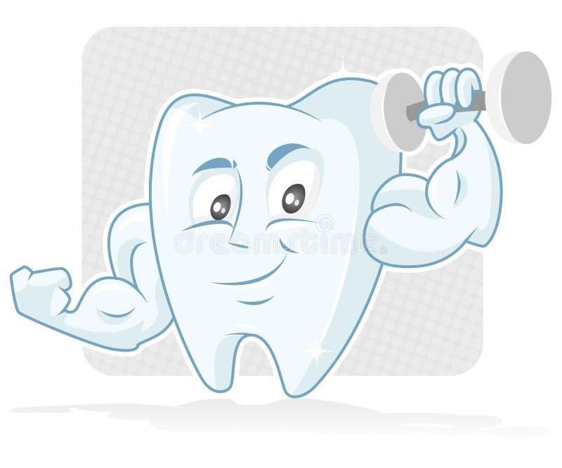 мышечный зуб стоковое фото