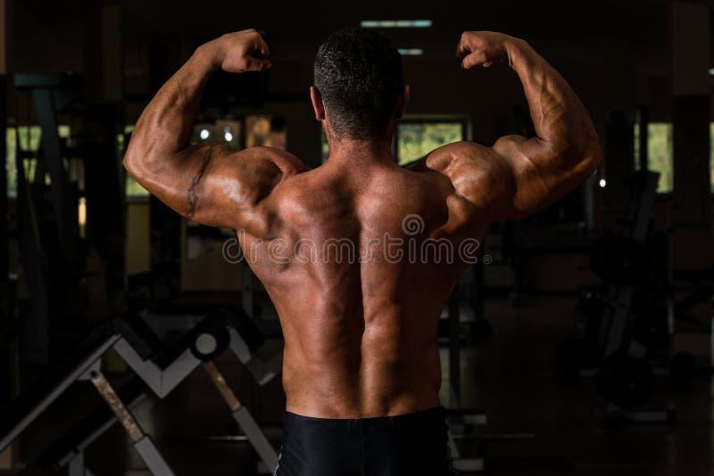 Мышечный культурист показывая его задний двойной бицепс стоковые фото
