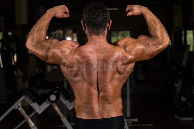 Мышечный культурист показывая его задний двойной бицепс стоковые изображения