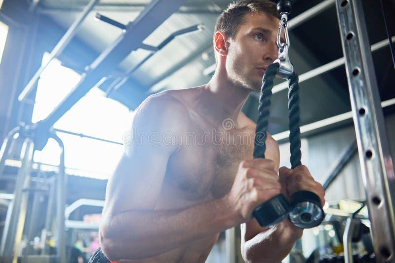 Мышечный человек в спортзале стоковые фотографии rf