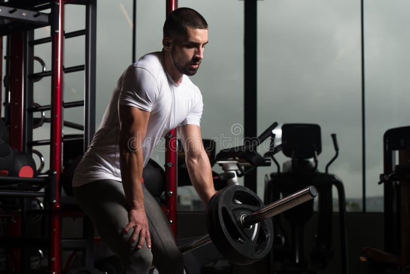 Мышечный человек работая назад с штангой стоковые фотографии rf