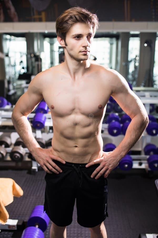 Мышечный человек разрабатывая в спортзале делая тренировки на трицепсах, сильном мужском нагом abs торса Фитнес стоковые изображения