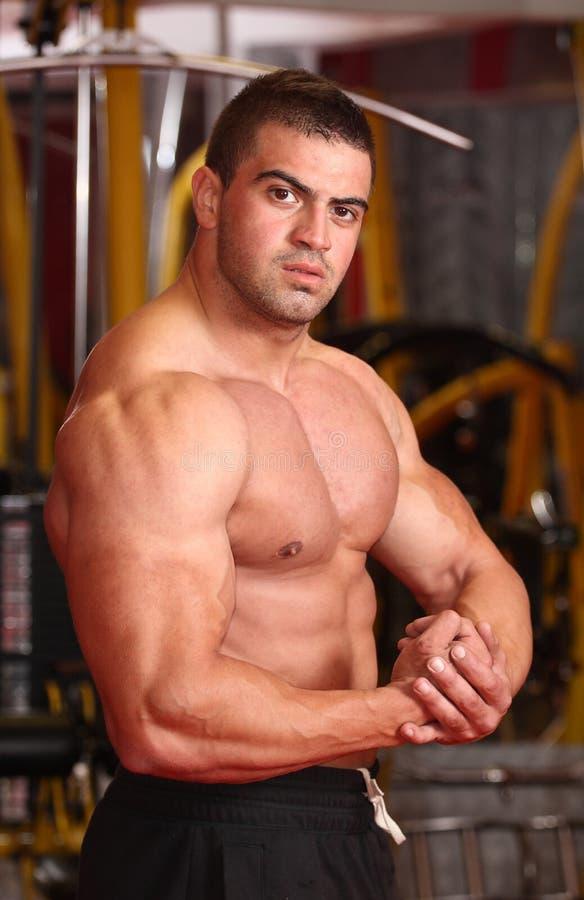 Мышечный человек в спортзале стоковое фото rf