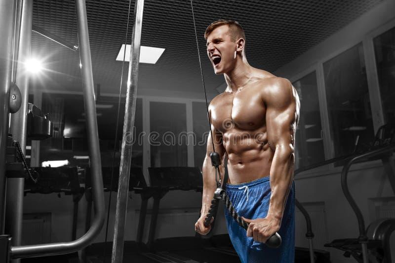 Мышечный человек разрабатывая в спортзале делая тренировки на трицепсах, сильном мужском нагом abs торса стоковое фото rf