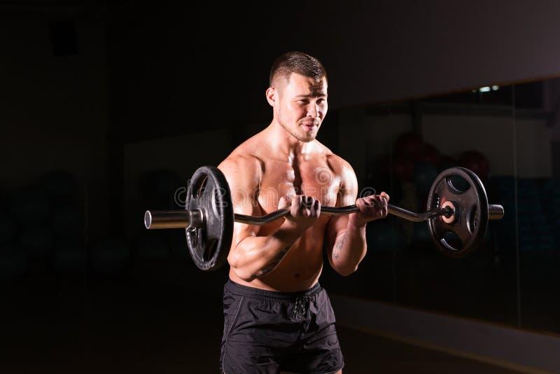 Мышечный человек разрабатывая в спортзале делая тренировки с штангой, сильным мужским нагим abs торса стоковые изображения rf