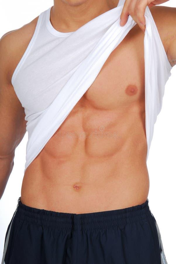 мышцы мужчины abdome стоковые изображения rf