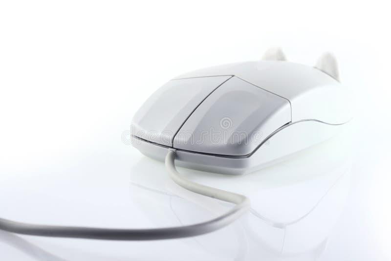 мышь компьютера стоковые изображения