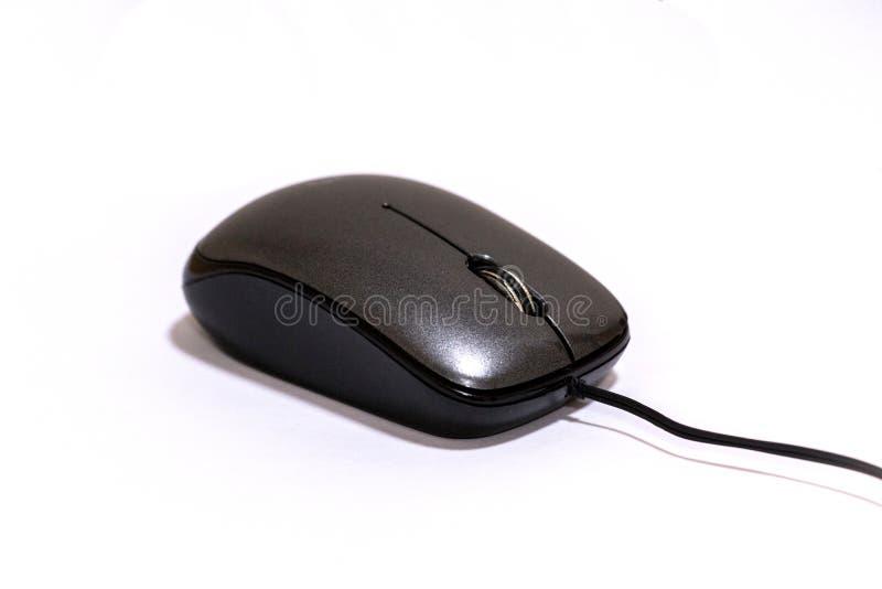 мышь оптически стоковая фотография rf