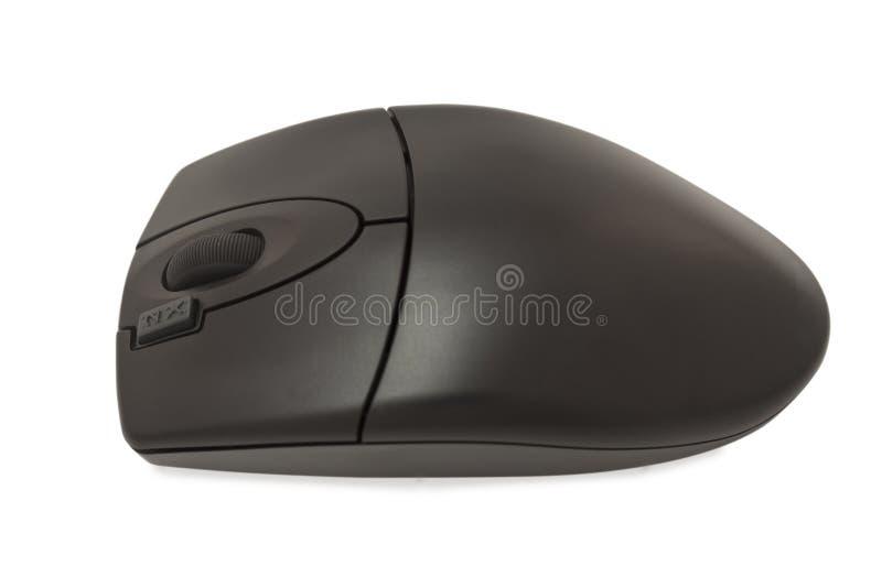 Download мышь оптически стоковое фото. изображение насчитывающей технология - 17615332