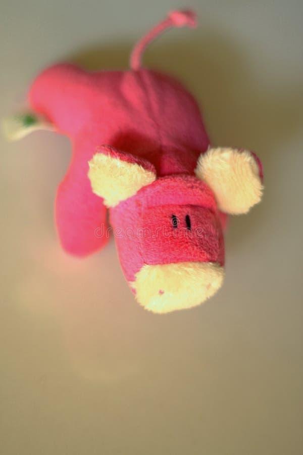мягкая игрушка стоковые изображения rf